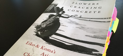 Stillness and Disruption: On Flowers Cracking Concrete, a Book by Rosemary Candelario